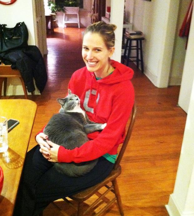 ash lap cat